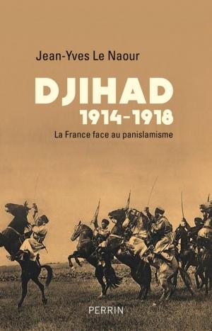 https://www.gregoiredetours.fr/img/livre/jean-yves-la-naour-djihad-1914-1918-la-france-face-au-panislamisme.jpg